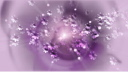 Royalty Free HD Video Clip of Floating Purple Flowers