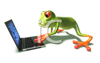 Royalty Free 3d Clipart Image of a Frog Looking at a Laptop