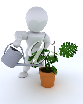 3D render of man with watering can feeding a plant