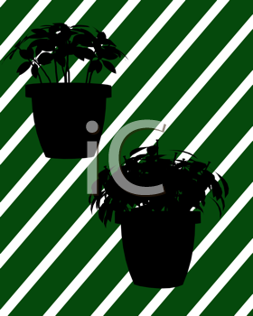 Royalty Free Clipart Image of Two Christmas Plants on a Green Striped Background