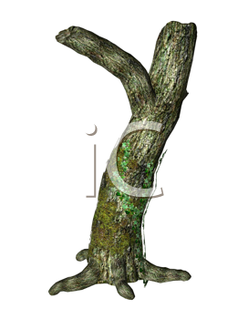 Royalty Free Clipart Image of a Tree Trunk