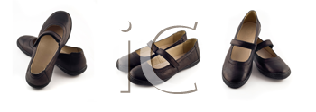 Royalty Free Clipart Image of Women's Leather Shoes