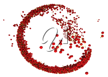 Sweet red cherry flow isolated over white background