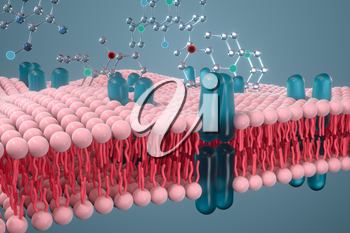 Cell membrane and biology, biological concept, 3d rendering. Computer digital drawing.