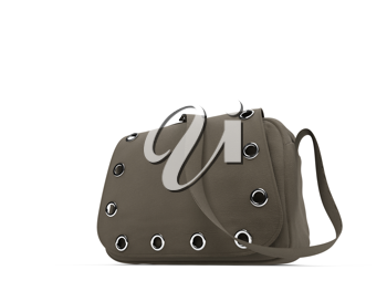 Royalty Free Clipart Image of a Satchel