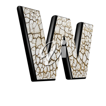 abstract 3d letter with dry ground texture - W