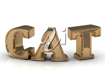 Cat - inscription of bright gold letters on white background