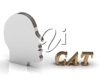 CAT bright color letters and silver head mind on a white background