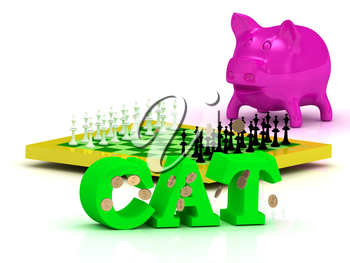 CAT bright word, money, pink piggy, yellow chess on white background