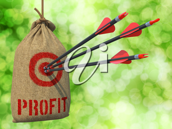 Profit - Three Arrows Hit in Red Target on a Hanging Sack on Green Bokeh Background.
