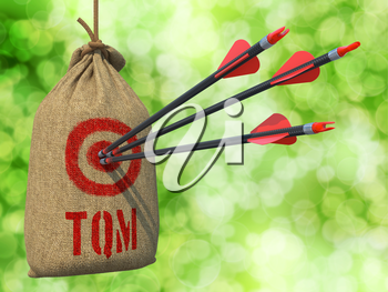 TQM - Total Quality Management - Three Arrows Hit in Red Target on a Hanging Sack on Natural Bokeh Background.