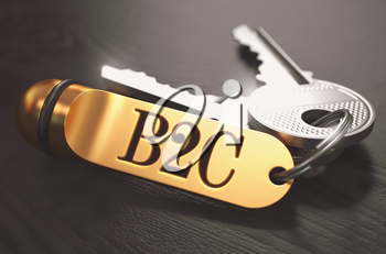 B2C - Business To Consumer - Bunch of Keys with Text on Golden Keychain. Black Wooden Background. Closeup View with Selective Focus. 3D Illustration. Toned Image.