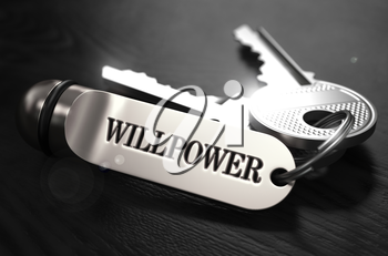 Willpower Concept. Keys with Keyring on Black Wooden Table. Closeup View, Selective Focus, 3D Render. Black and White Image.
