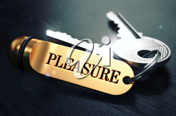Pleasure Concept. Keys with Golden Keyring on Black Wooden Table. Closeup View, Selective Focus, 3D Render. Toned Image.