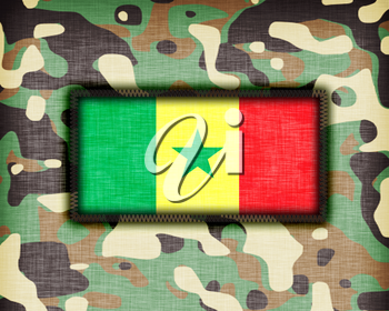 Amy camouflage uniform with flag on it, Senegal