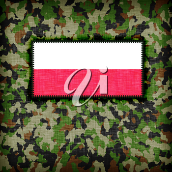 Amy camouflage uniform with flag on it, Poland