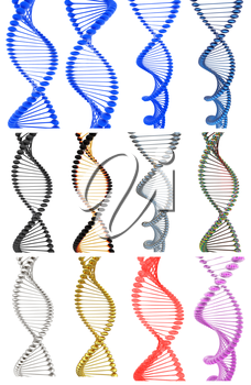 Set of DNA structure model on a white background