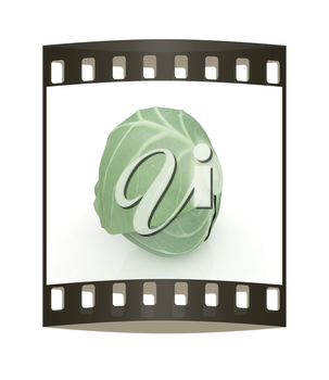 Green cabbage on a white background. The film strip