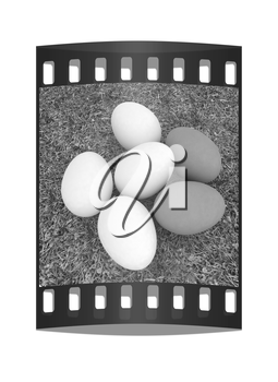 Eggs on the grass. The film strip