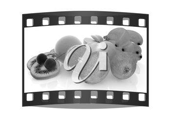Citrus on a white background. The film strip