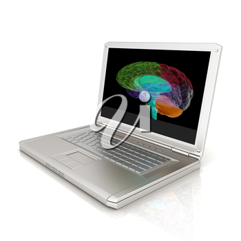 creative three-dimensional model of  human brain scan on a digital laptop. 3d render