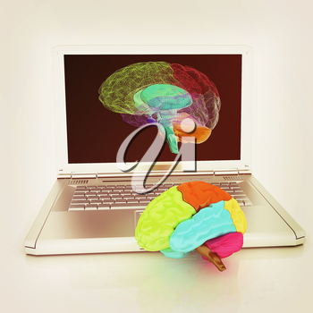 creative three-dimensional model of real human brain and scan on a digital laptop. 3d render