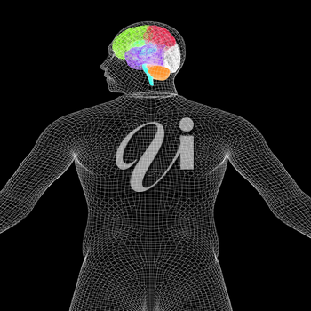 Wire human model with brain. 3d render. On a black background.