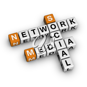 Social Media Network    (3D crossword orange series)