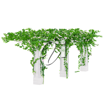 Wooden construction with fancy and beautiful flowers on it in surrounding of green leaves pergola