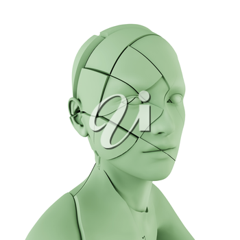 Human head with cracks on white background