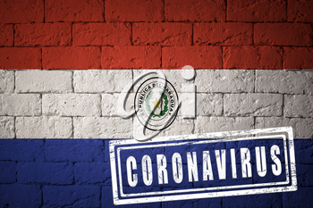 Flag of the Paraguay with original proportions. stamped of Coronavirus. brick wall texture. Corona virus concept. On the verge of a COVID-19 or 2019-nCoV Pandemic.